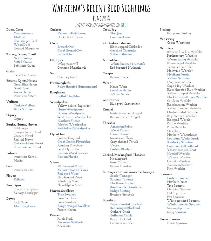 Bird List Website june
